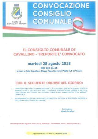 Consiglio Comunale  locandina